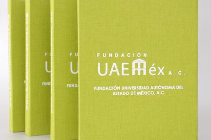 Cajas Uaemex